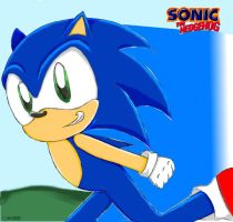Sonic The Hedgehog by SuperSonicGirl79135