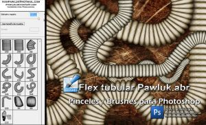 Flex tubular Pawluk  Brushes by ipawluk