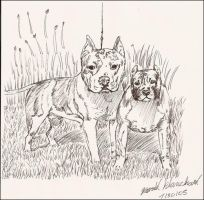 Two Pitbulls by Creativepad