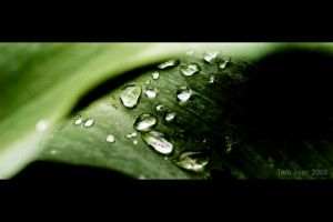 Droplets by Heremod