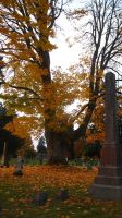 Cemetary Fall II by TawnsterMonster