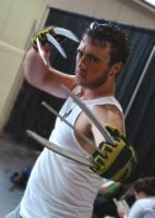 AN2012: Wolverine by Lizeth