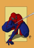 Fooray's Spiderman by philby