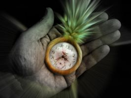 it's time to pinnaple by Andreanh