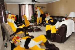Yellow Fox Takeover by LightningTheFox7