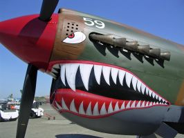 P-40 2008 Airshow by BaronGirl