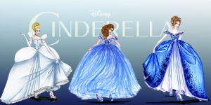 Cinderella Collection by DsBerries