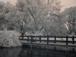 Perceived Winter by MadejyalookGraphics