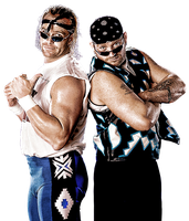 New Age Outlaws Render by cmpunkster