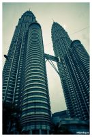 Twin Towers by PvP