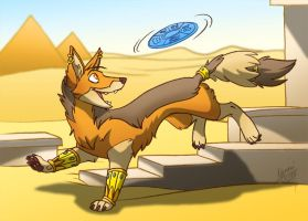 egyptian frisbee by nyemi
