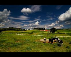 amish country 2 by BillyRWebb