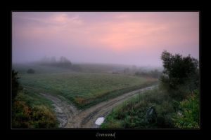 Crossroad by plbeaulieu