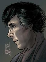 Sherlock Profile iPad by semie