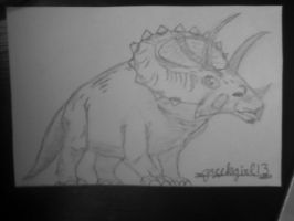 Triceratops by greekgirl13