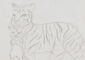 Another sketch of tigers by A-Lucky-Mutt