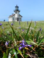 Point Cabrillo Lighthouse Frontview by Samela7