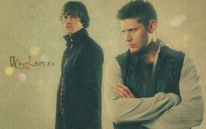 Winchester Bros. Wallpaper by virgothedreamer