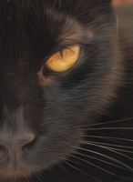 Cat oil paint by centerdave77