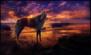 On the Horizon by equinestudios