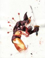 1st_Place_Wolverine by M00SE-Lee