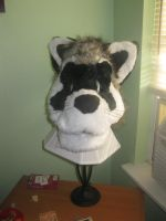 raccoon head finished. by vexhis