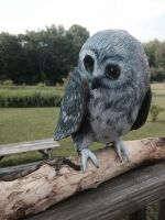 Paper Mache Owl by EssenceOfWhimsy