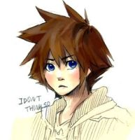 SORA? by real00