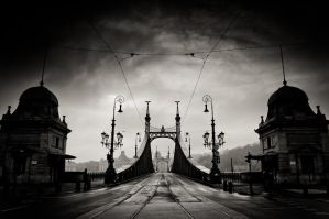 liberty bridge I by torobala