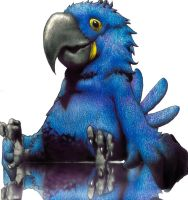 Blue Macaw by BrunoEpeb