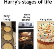 Harrys stages of life by DirectionForLyfe