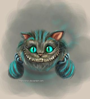 .Cheshire. by Mareishon