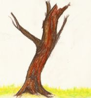 A Busted up Tree by Psychicbard