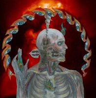Lateralus by tool-band