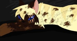 Welcome to Hawkpaw's life by annathewerewolf