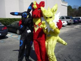 Flareon, Shiny Bre and Jolt by lcpatchworkheart