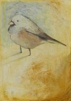 Little Bird Waiting ACEO by SethFitts