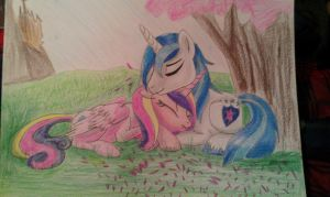 Shining armor and Cadence....DAAWW by RusticShine