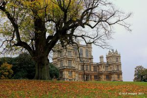 Wollaton Hall and Deer Park 7 by MichaelJTopley