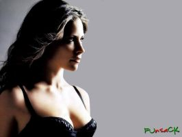 HQ Evangeline Lilly wallpapers by maxmk04