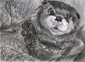Otter_aceo by GreyCatFelis