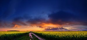 Hungarian skies CCVII. by realityDream