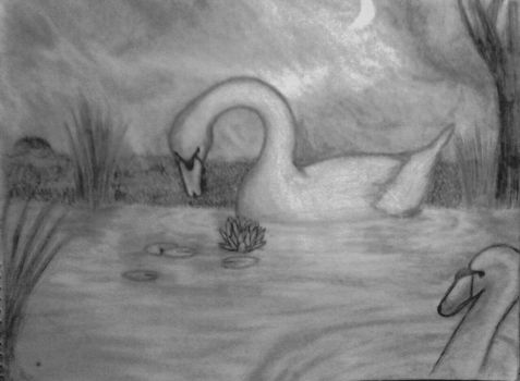 Inquisitive Swan by Amber-Gemnia
