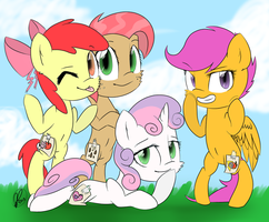 Cutie Mark Crusaders 12-7-13 by jpstardust