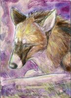 ACEO-Javck by ElementalSpirits