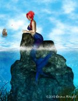 The Little Mermaid by zememz
