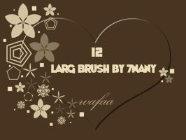 12 larg brush by 7nany