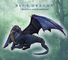 E-S Blue Dragon by Elevit-Stock