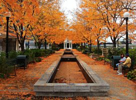 fall colors in dayton by twombold