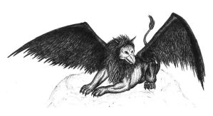 Griffin by Sekhi